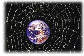 Web of the World
