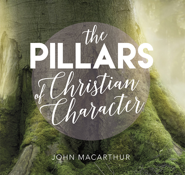 the-pillars-of-christian-character