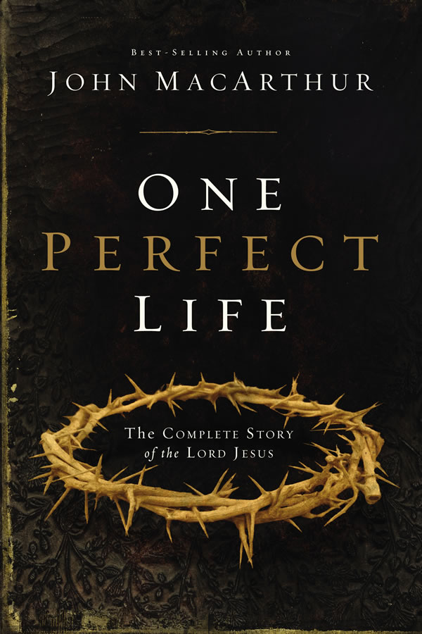 One Perfect Life (Hardcover)