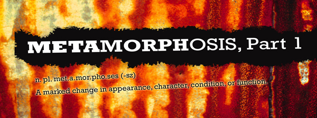 Previous post: Metamorphosis, Part 1 (End of the Cold War)