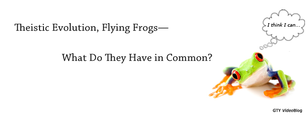 Previous post: Theistic Evolution, Flying Frogs—<br />What Do They Have in Common?