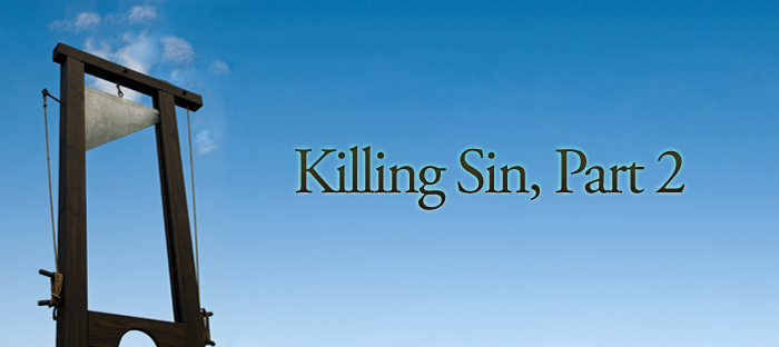 Previous post: Killing Sin, Part 2