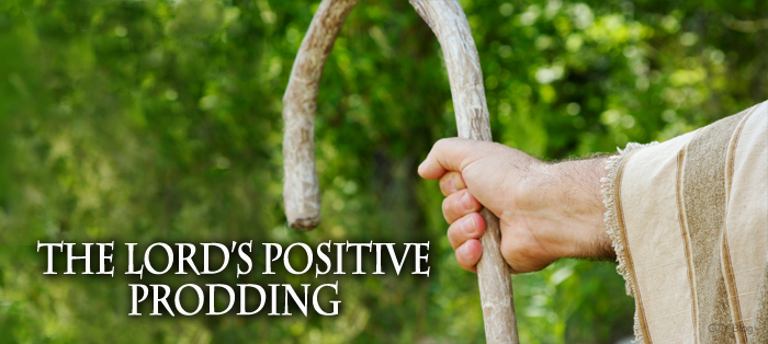 Previous post: The Lord's Positive Prodding