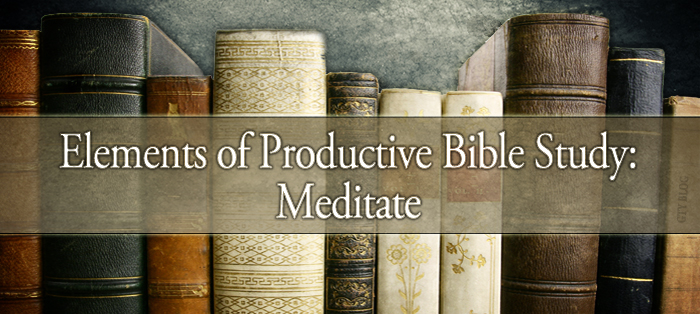 Elements of Productive Bible Study: Meditate