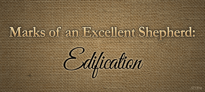 Previous post: Marks of an Excellent Shepherd: Edification