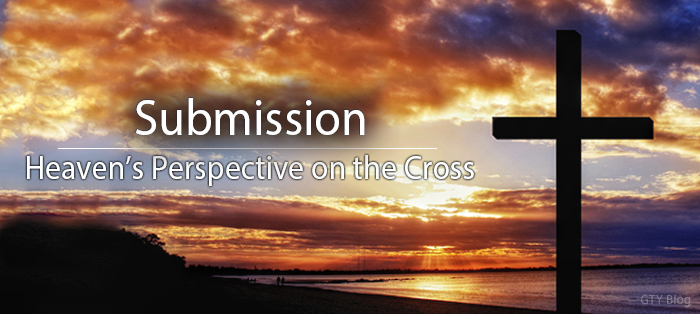 Next post: Heaven's Perspective on the Cross: Submission