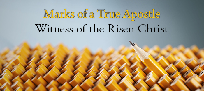 Previous post: Marks of a True Apostle: Witness of the Risen Christ