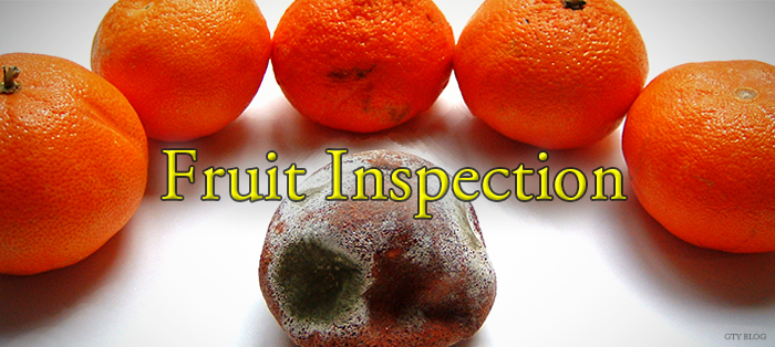 Fruit Inspection