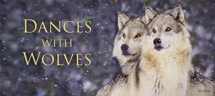 Next post: Dances with Wolves