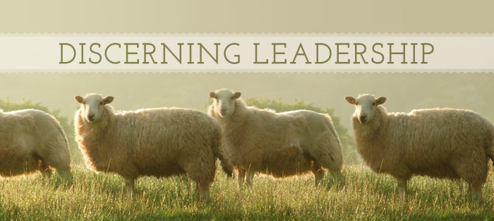 Previous post: Discerning Leaders
