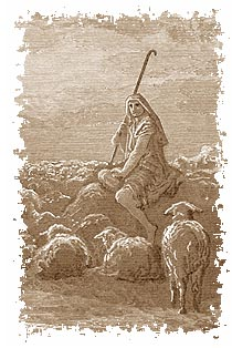 A shepherd with sheep.